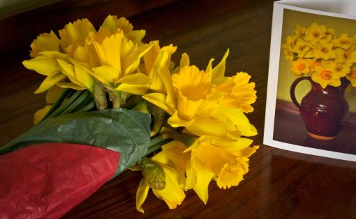 Daffodils-gift-wrapped-with-card